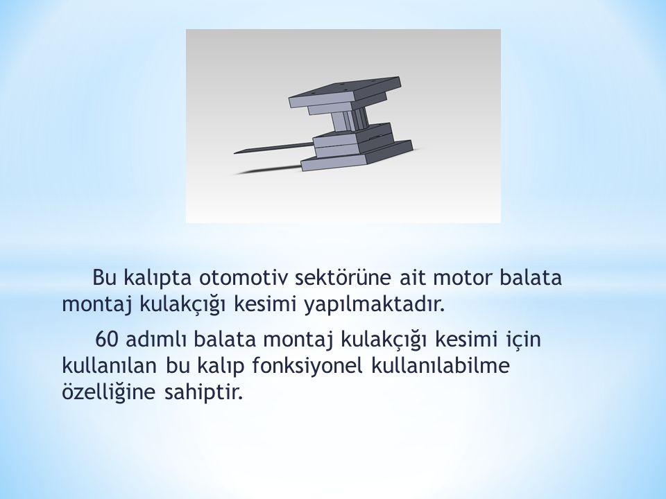 Bu kalıpta otomotiv sektörüne ait motor balata montaj kulakçığı kesimi yapılmaktadır. 60 adımlı balata montaj kulakçığı kesimi için kullanılan bu kalı