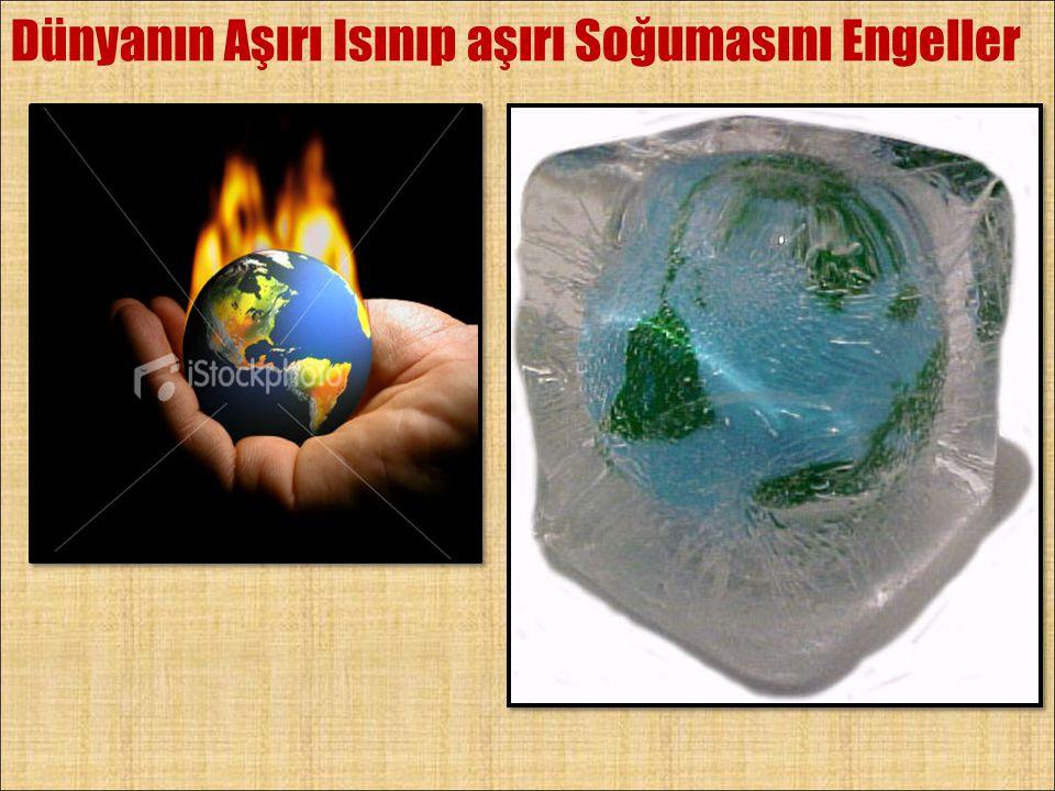 Dünyanın Aşırı Isınıp aşırı Soğumasını Engeller