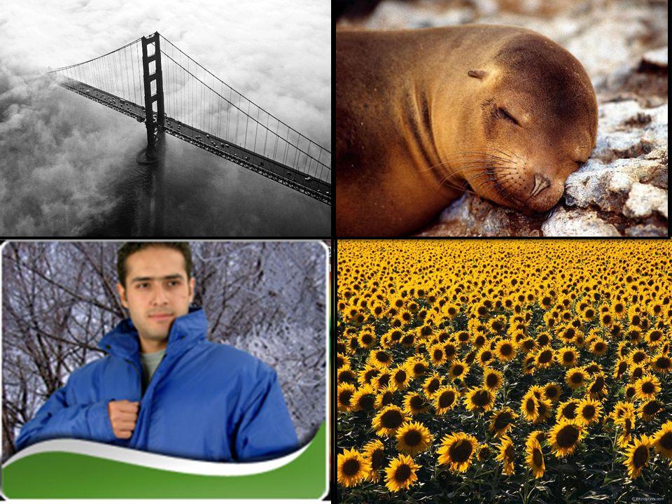 Biraz sonra gelecek resimlere bakarak iklimin etkilerini söyleyin. İklim İnsan Yaşamını nasıl Etkiler ? İklim hayatımızda başka nerelerde etkili olur?
