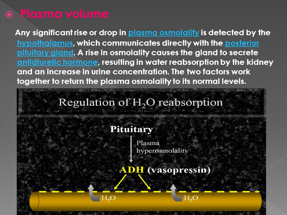  Plasma volume Any significant rise or drop in plasma osmolality is detected by the hypothalamus, which communicates directly with the posterior pitu