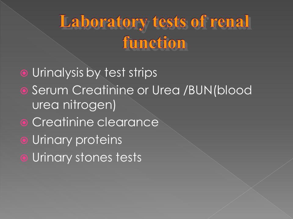  Urinalysis by test strips  Serum Creatinine or Urea /BUN(blood urea nitrogen)  Creatinine clearance  Urinary proteins  Urinary stones tests