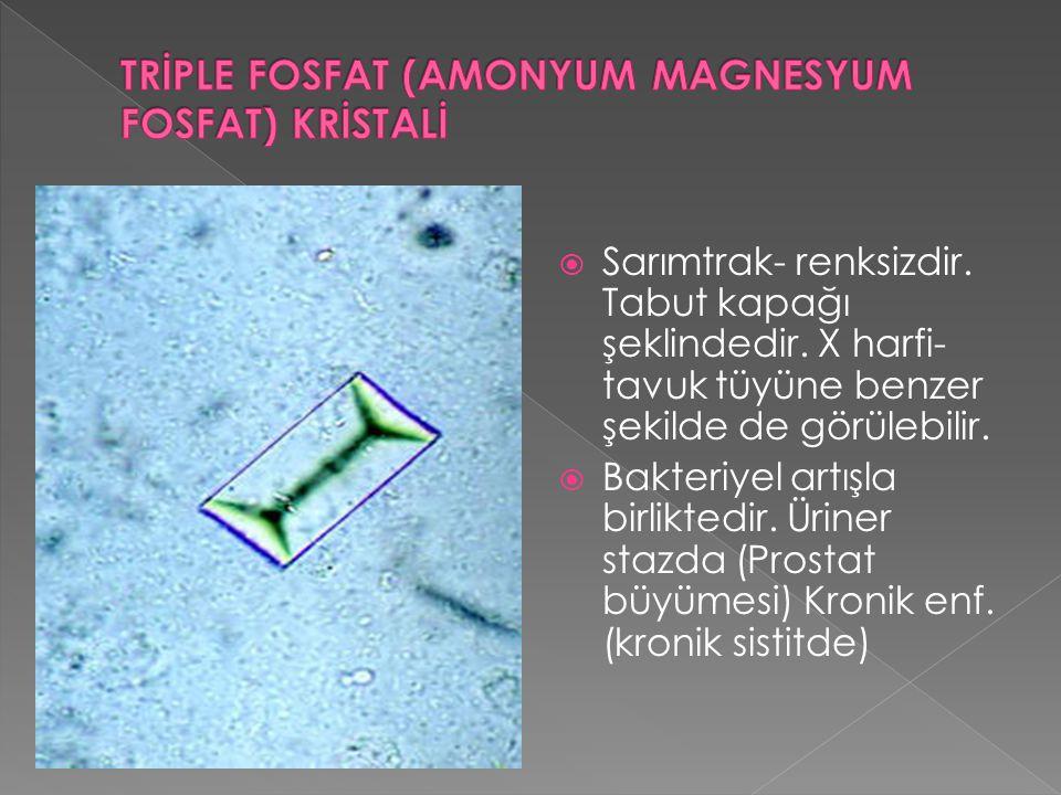  Sarımtrak- renksizdir. Tabut kapağı şeklindedir. X harfi- tavuk tüyüne benzer şekilde de görülebilir.  Bakteriyel artışla birliktedir. Üriner stazd