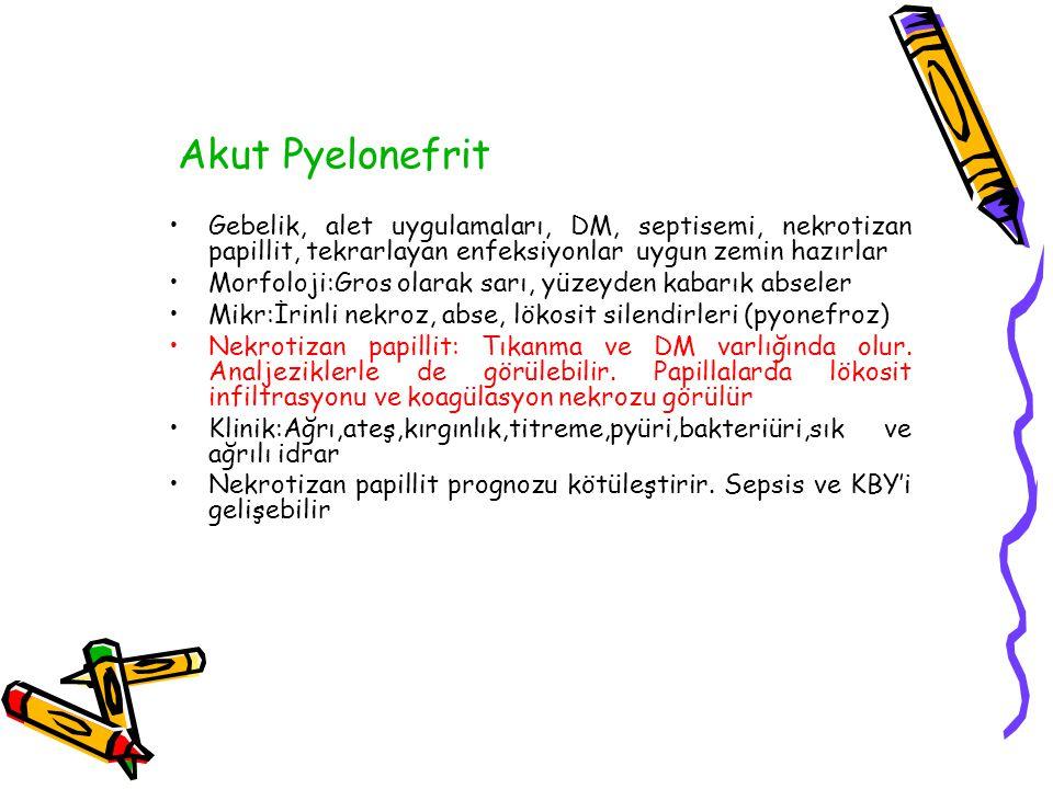 Akut Pyelonefrit Hemen daima bir alt üriner sistem enf.
