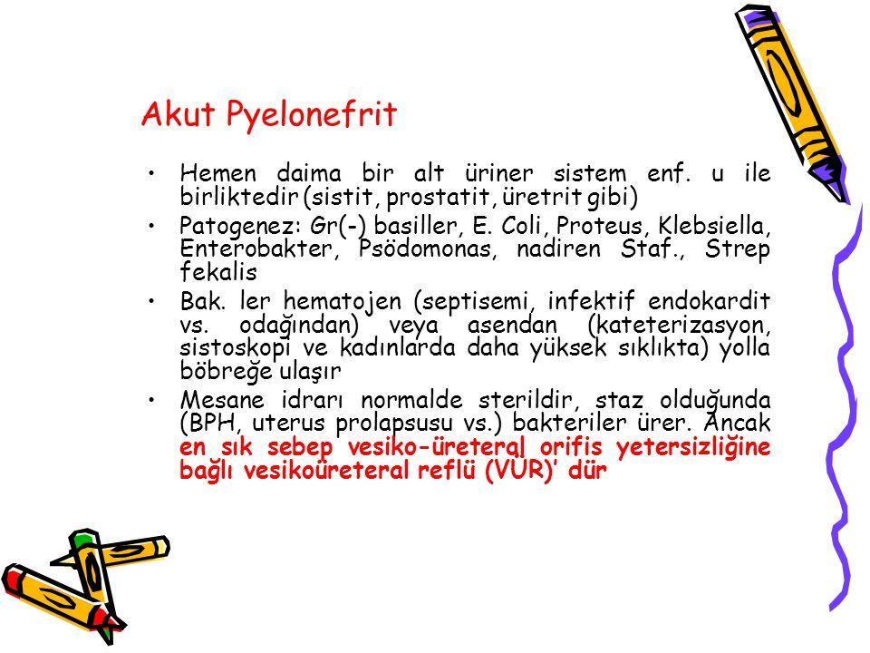 Akut Pyelonefrit Hemen daima bir alt üriner sistem enf. u ile birliktedir (sistit, prostatit, üretrit gibi) Patogenez: Gr(-) basiller, E. Coli, Proteu