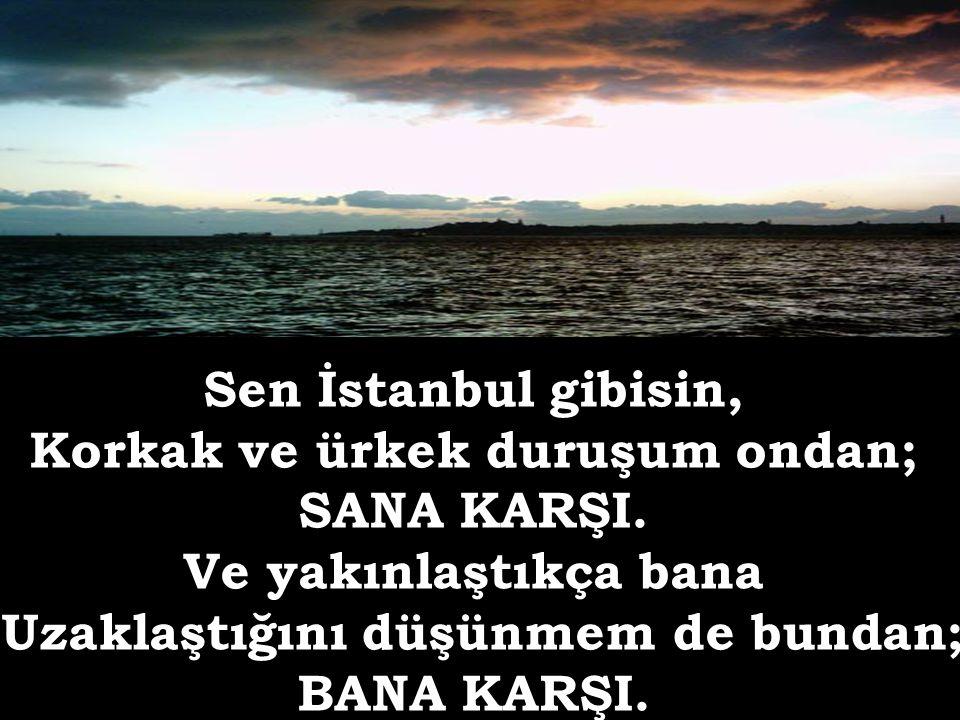 Sen İstanbul gibisin, Ellerin soğuk mu soğuk Marmara'dan çıkmış gibi.