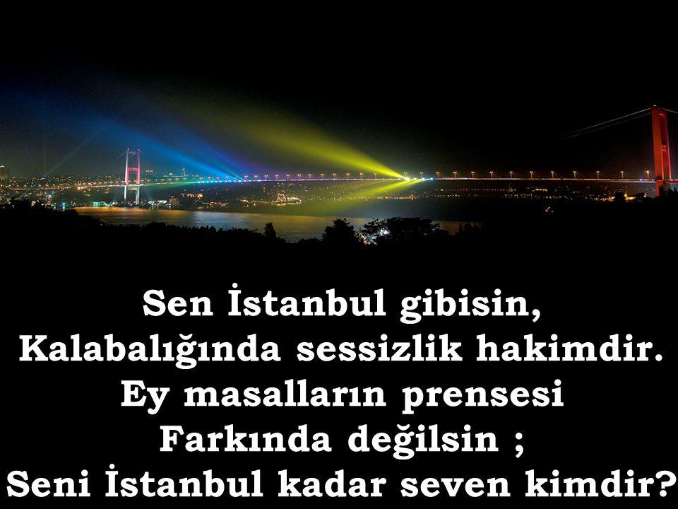 Sen İstanbul gibisin, Kalabalığında sessizlik hakimdir.
