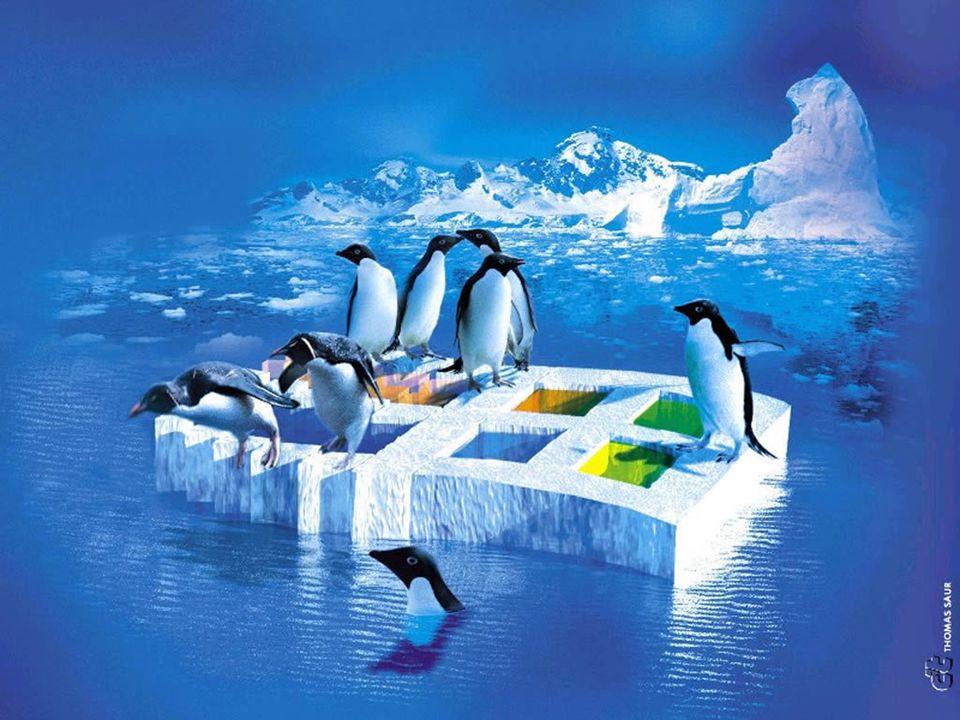 LINUX TEMEL KAVRAMLAR GIMP(GNU Image Maniplation Program) Linux altındaki en gelişmiş serbest yazılım grafik programıdır.
