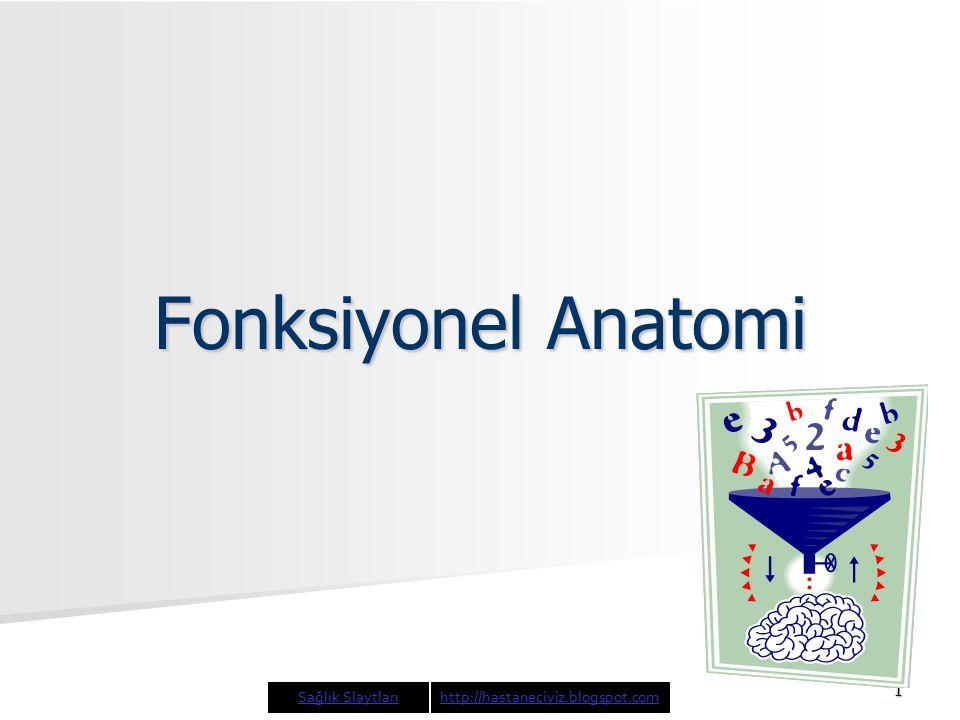 1 Fonksiyonel Anatomi Sağlık Slaytlarıhttp://hastaneciyiz.blogspot.com