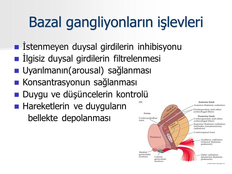 Bazal gangliyonların işlevleri İstenmeyen duysal girdilerin inhibisyonu İlgisiz duysal girdilerin filtrelenmesi Uyarılmanın(arousal) sağlanması Konsantrasyonun sağlanması Duygu ve düşüncelerin kontrolü Hareketlerin ve duyguların bellekte depolanması