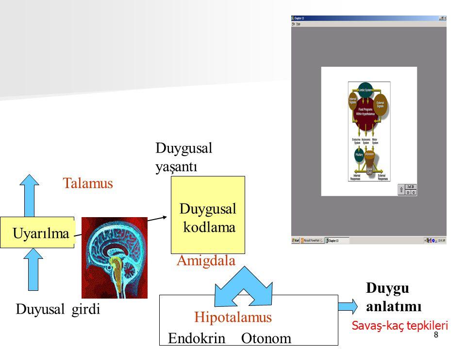 8 Duyusal girdi Uyarılma Duygusal kodlama Duygusal yaşantı Amigdala Duygu anlatımı Endokrin Otonom Hipotalamus Talamus Savaş-kaç tepkileri