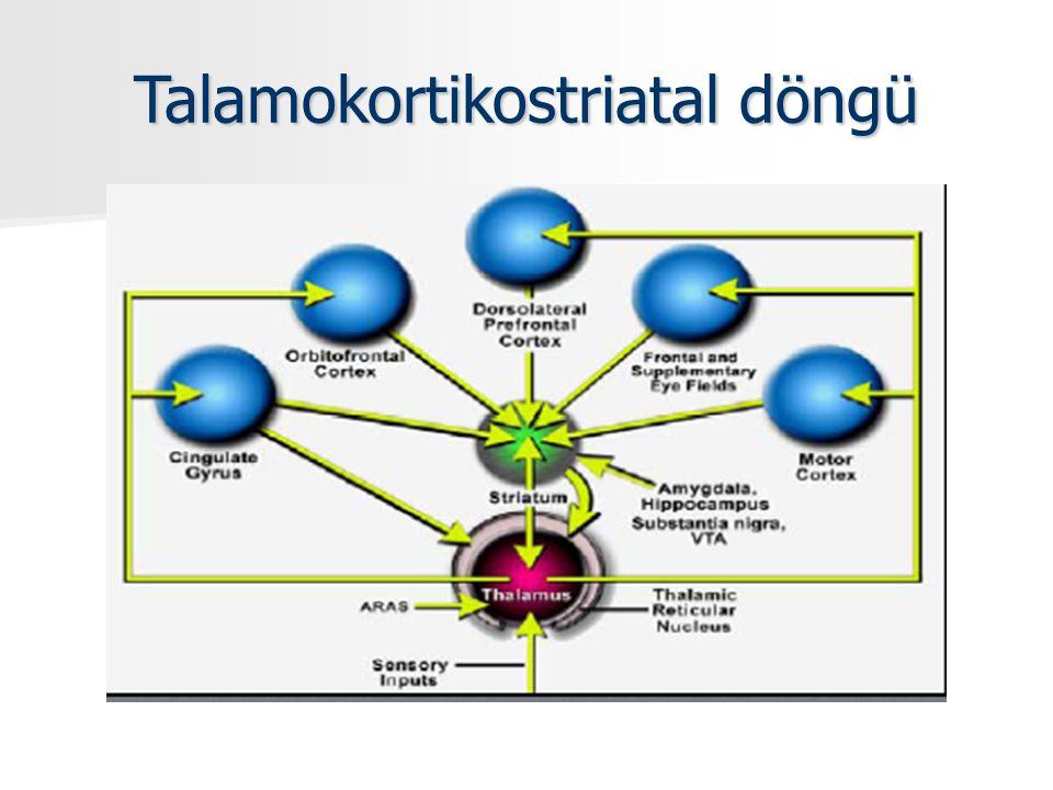 10 Duyusal girdi Uyarılma Seçici dikkat İşlem belleği Bağlantı korteksi Depolama Duygusal kodlama Cingulat Duygusal yaşantı Amigdala Duygu anlatımı Endokrin Otonom Hipotalamus Hipokampus Konsolidasyon Talamus