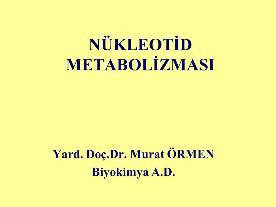 NÜKLEOTİD METABOLİZMASI Yard. Doç.Dr. Murat ÖRMEN Biyokimya A.D.