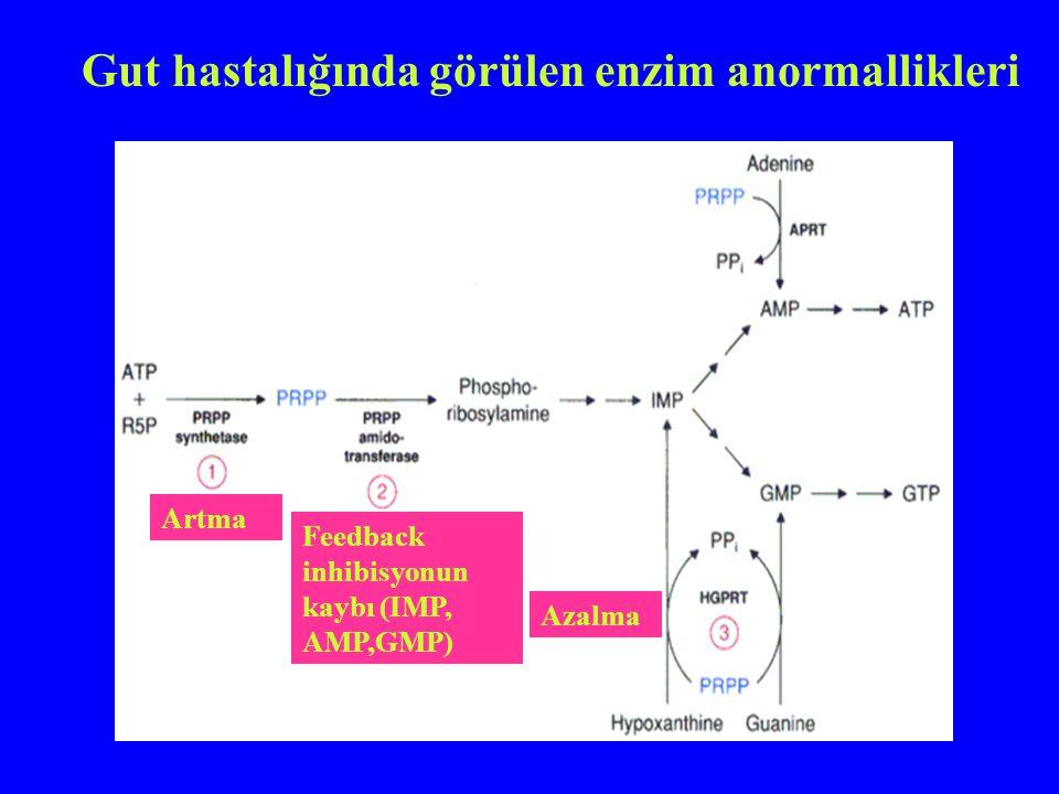 Artma Feedback inhibisyonun kaybı (IMP, AMP,GMP) Azalma Gut hastalığında görülen enzim anormallikleri