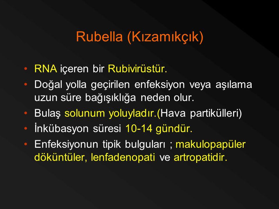 Rubella (Kızamıkçık) RNA içeren bir Rubivirüstür. Doğal yolla geçirilen enfeksiyon veya aşılama uzun süre bağışıklığa neden olur. Bulaş solunum yoluyl