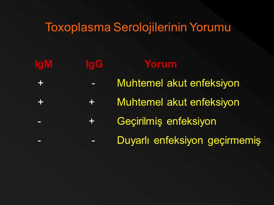 Toxoplasma Serolojilerinin Yorumu IgM IgGYorum + -Muhtemel akut enfeksiyon + +Muhtemel akut enfeksiyon - +Geçirilmiş enfeksiyon - -Duyarlı enfeksiyon