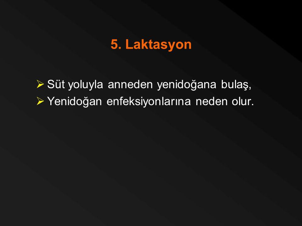 5. Laktasyon  Süt yoluyla anneden yenidoğana bulaş,  Yenidoğan enfeksiyonlarına neden olur.