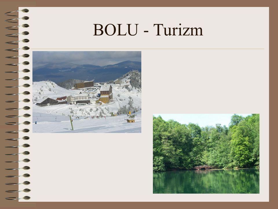 Bolu nun 42 km.kuzeyinde 1636 Ha.