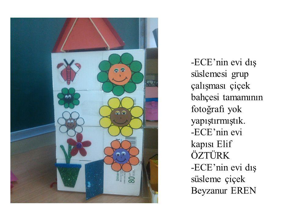 -ECE'nin evi dış süslemesi grup çalışması çiçek bahçesi tamamının fotoğrafı yok yapıştırmıştık. -ECE'nin evi kapısı Elif ÖZTÜRK -ECE'nin evi dış süsle