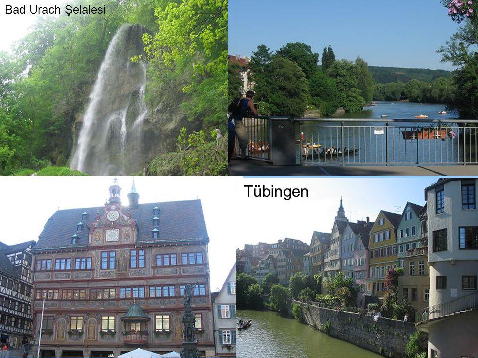 Bad Urach Şelalesi Tübingen