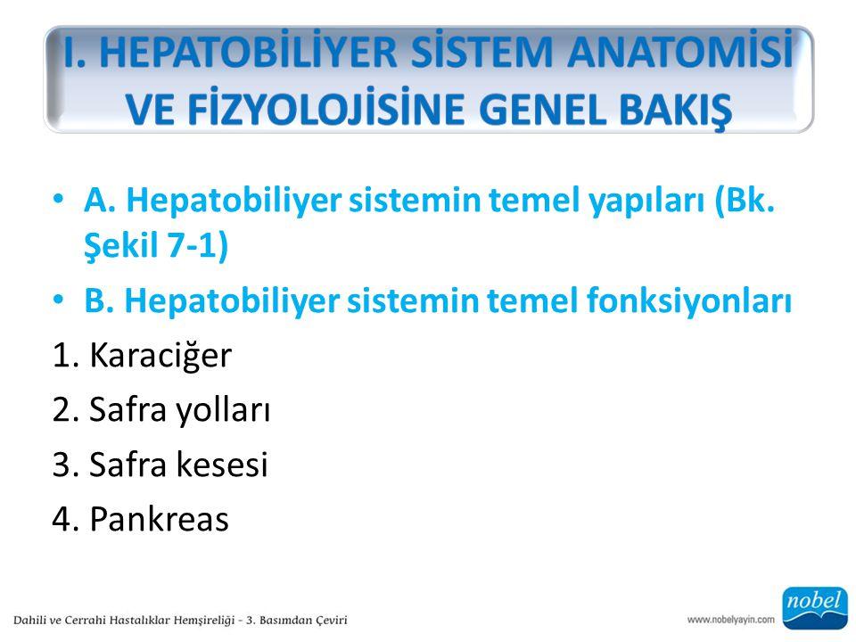 A.Hepatobiliyer sistemin temel yapıları (Bk. Şekil 7-1) B.