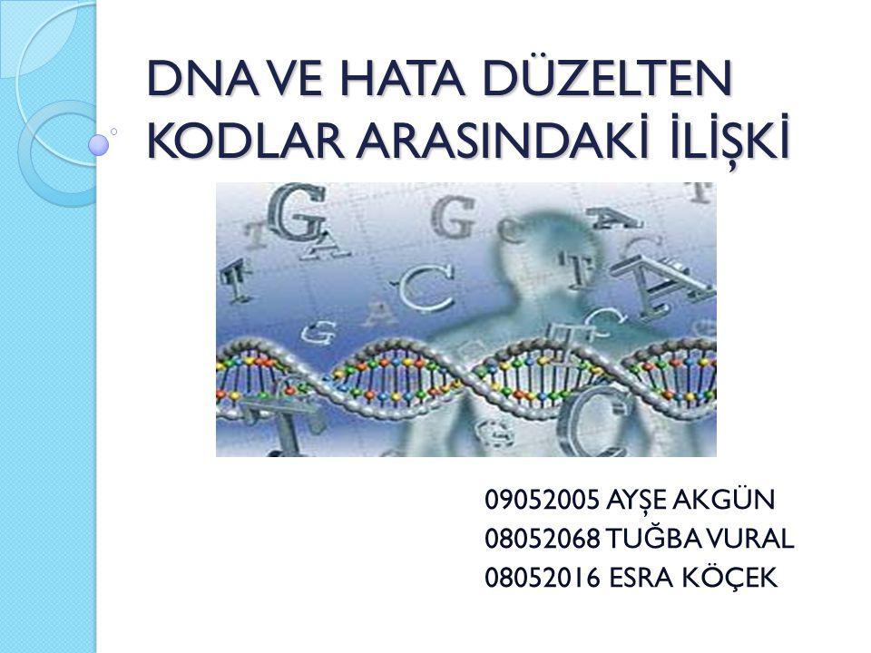 DNA VE HATA DÜZELTEN KODLAR ARASINDAK İ İ L İ ŞK İ 09052005 AYŞE AKGÜN 08052068 TU Ğ BA VURAL 08052016 ESRA KÖÇEK