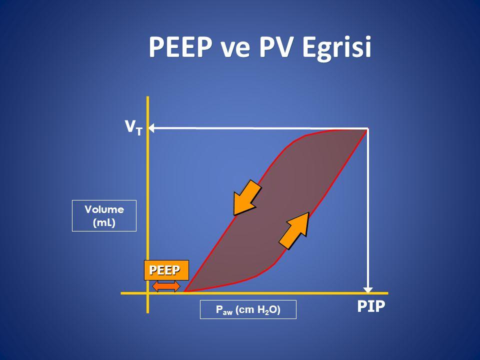 PEEP ve PV Egrisi Volume (mL) VTVT PIP P aw (cm H 2 O) PEEP