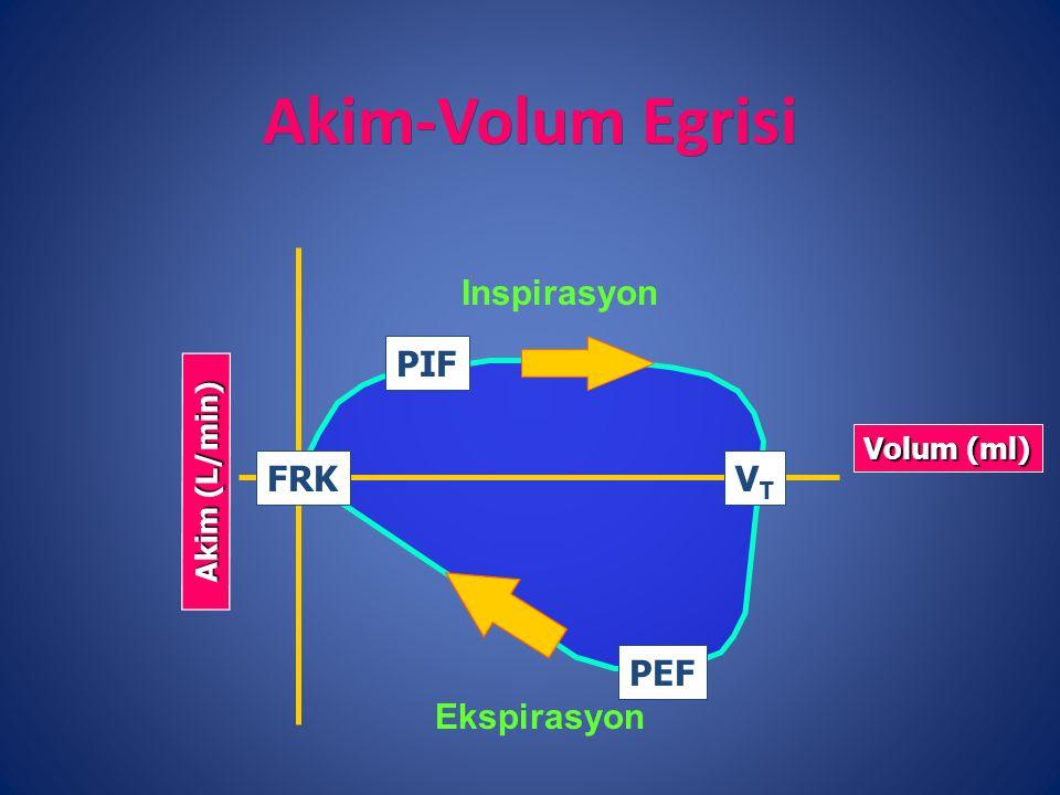 Akim-Volum Egrisi Volum (ml) PEF FRK Inspirasyon Ekspirasyon Akim (L/min) PIF VTVT