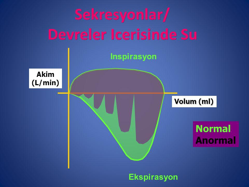 Sekresyonlar/ Devreler Icerisinde Su Inspirasyon Ekspirasyon Volum (ml) Akim (L/min) Normal Anormal