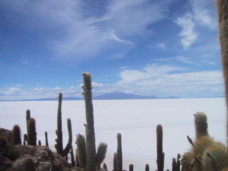 Uyuni Gölündeki tuz miktarı 10 milyar ton olarak tahmin edilmektedir.