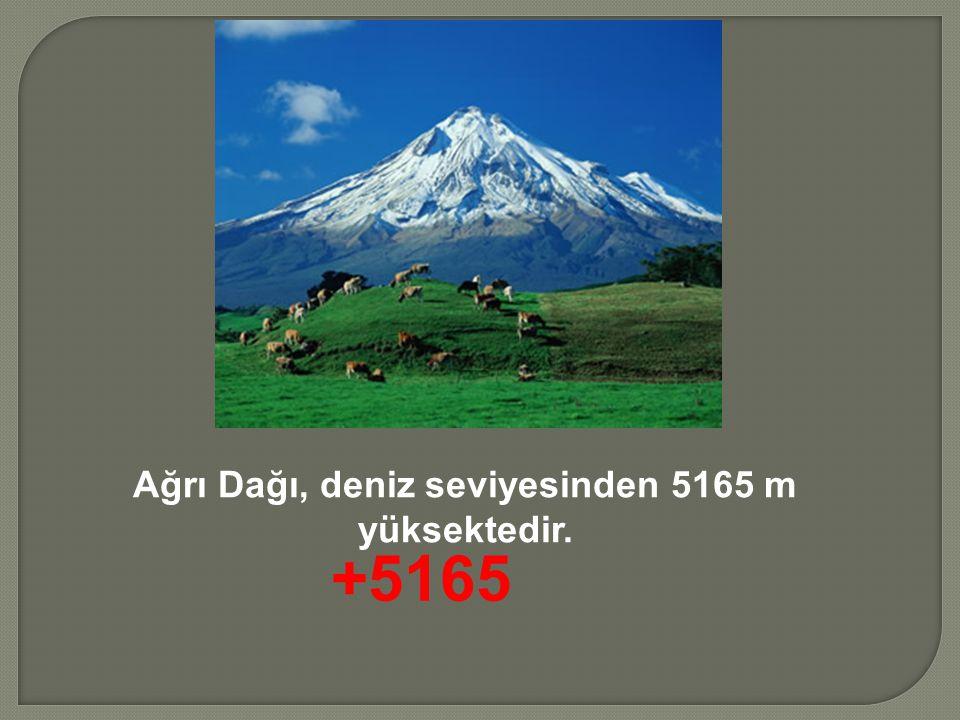 Ağrı Dağı, deniz seviyesinden 5165 m yüksektedir. +5165