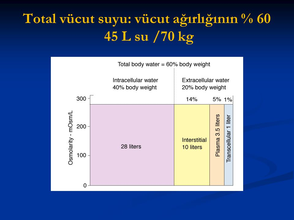 Total vücut suyu: vücut ağırlığının % 60 45 L su /70 kg