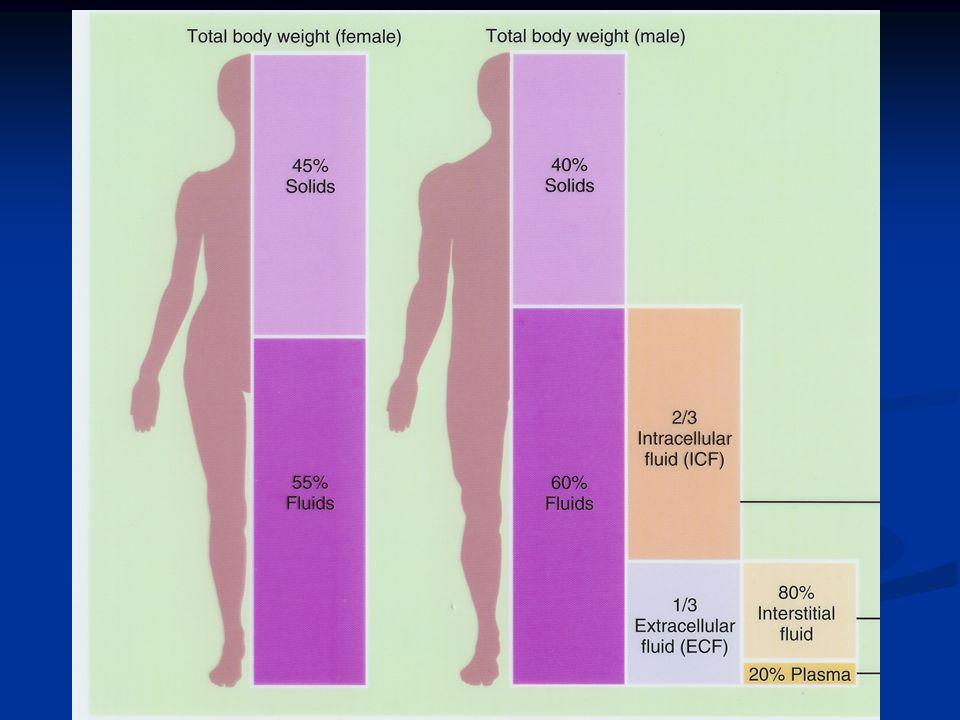 TOTAL VÜCUT SUYU İntraselüler 2/3'ü (30 lt) VA'nın %40-45 Ekstraselüler 1/3'ü (13lt) * İntertisyel sıvı VA'nın %11-15 * İntravasküler sıvı (plazma) VA'nın %5 (3.5 lt)