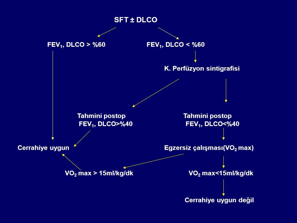 SFT ± DLCO FEV 1, DLCO > %60 FEV 1, DLCO < %60 K.