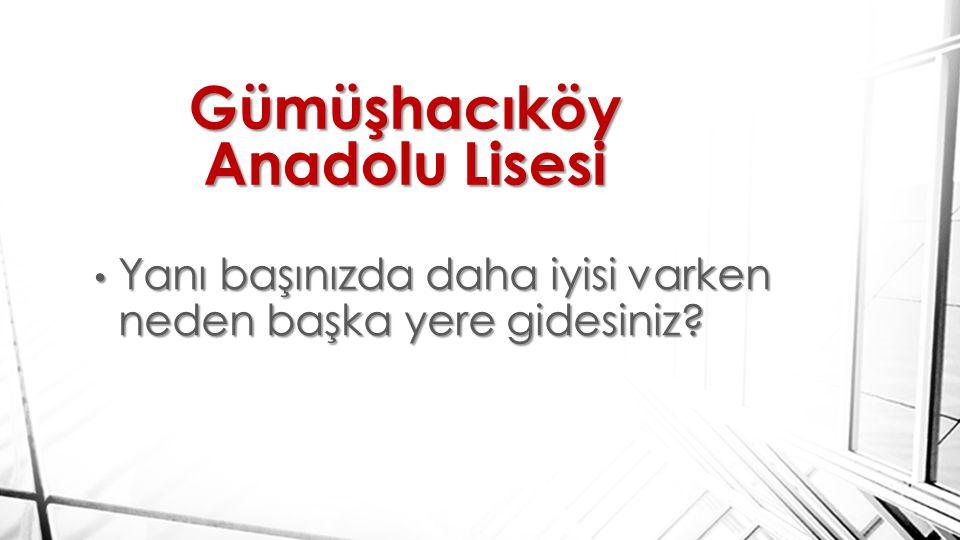 Gümüşhacıköy Anadolu Lisesi Yanı başınızda daha iyisi varken neden başka yere gidesiniz.