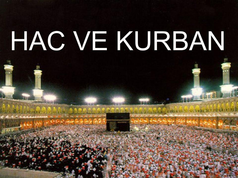 Hacca gidenlerin Mekke'ye geldiklerinde Kâbe'nin etrafında belli bir düzen içinde yedi kez dönmelerine Tavaf denir.