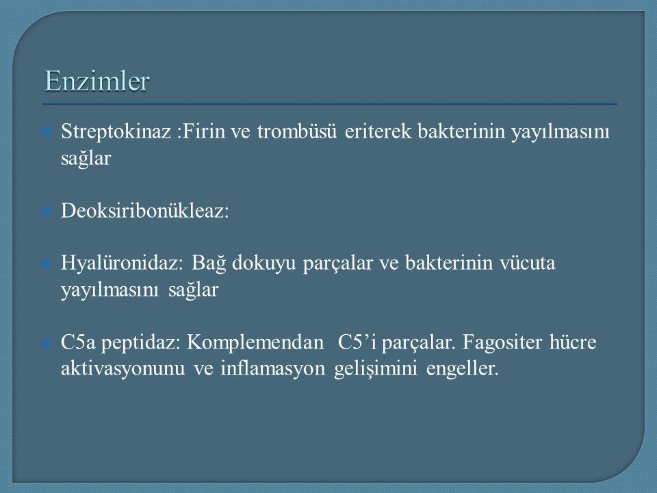  Streptokinaz :Firin ve trombüsü eriterek bakterinin yayılmasını sağlar  Deoksiribonükleaz:  Hyalüronidaz: Bağ dokuyu parçalar ve bakterinin vücuta
