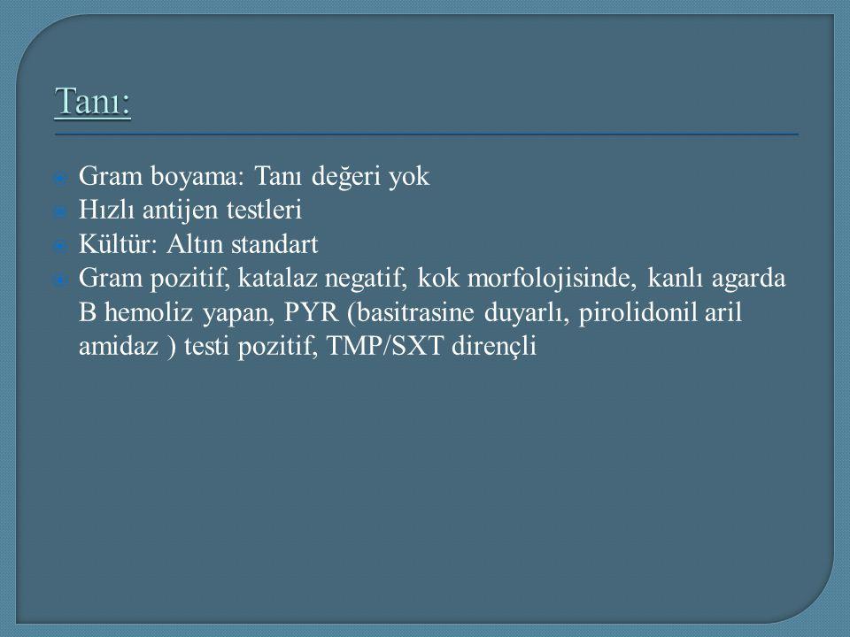  Gram boyama: Tanı değeri yok  Hızlı antijen testleri  Kültür: Altın standart  Gram pozitif, katalaz negatif, kok morfolojisinde, kanlı agarda B h