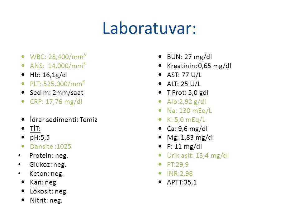 Laboratuvar: WBC: 28,400/mm³ ANS: 14,000/mm³ Hb: 16,1g/dl PLT: 525,000/mm³ Sedim: 2mm/saat CRP: 17,76 mg/dl İdrar sedimenti: Temiz TİT: pH:5,5 Dansite :1025 Protein: neg.