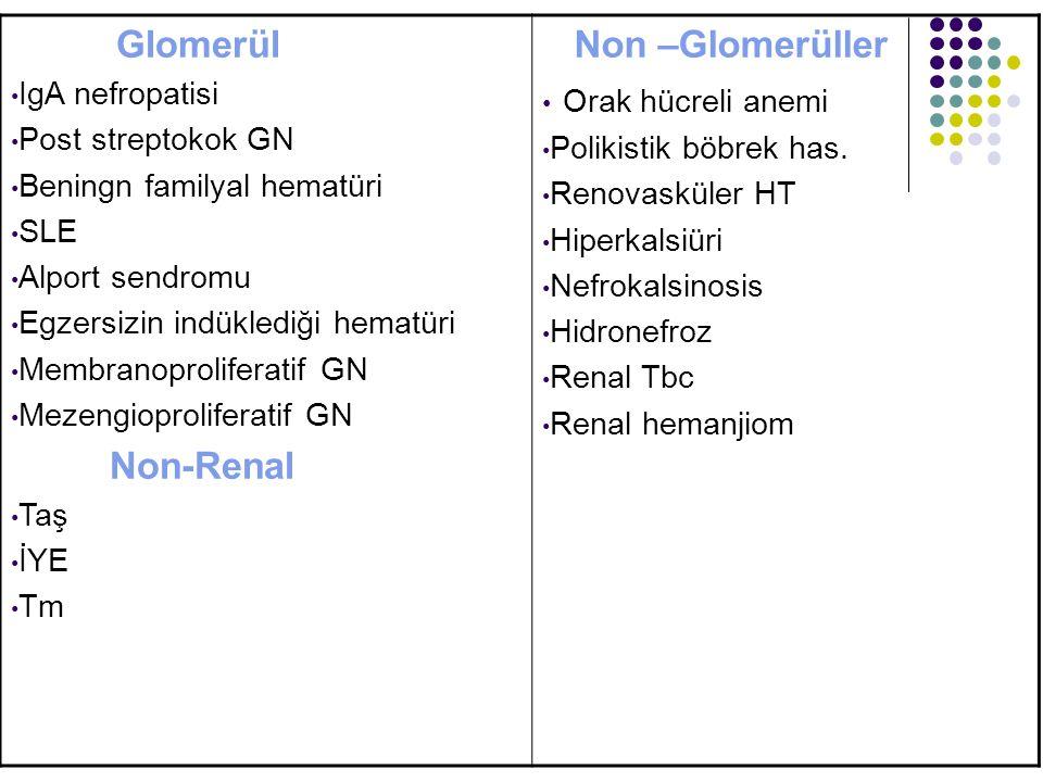 Glomerül IgA nefropatisi Post streptokok GN Beningn familyal hematüri SLE Alport sendromu Egzersizin indüklediği hematüri Membranoproliferatif GN Meze