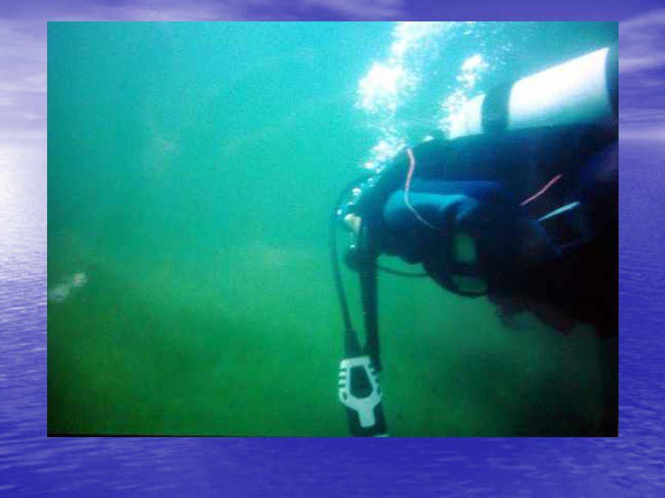 Tüplü dalış: Ağustos 2002
