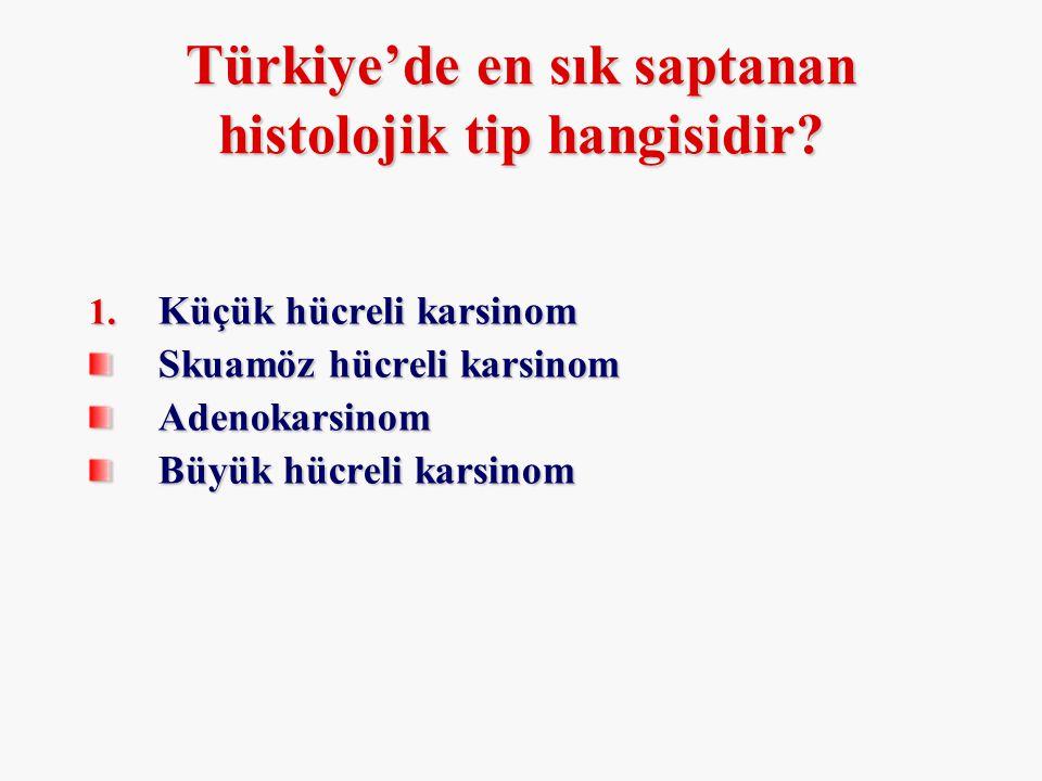Türkiye'de en sık saptanan histolojik tip hangisidir? 1. Küçük hücreli karsinom Skuamöz hücreli karsinom Adenokarsinom Büyük hücreli karsinom