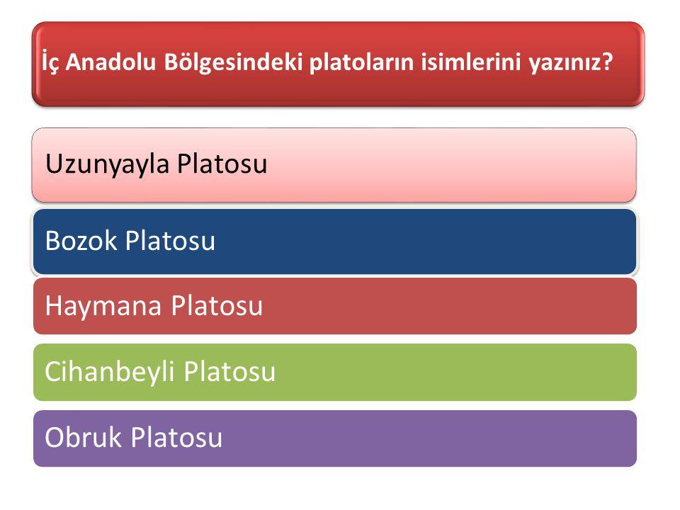 İç Anadolu Bölgesindeki platoların isimlerini yazınız? Uzunyayla Platosu Bozok Platosu Haymana PlatosuCihanbeyli PlatosuObruk Platosu
