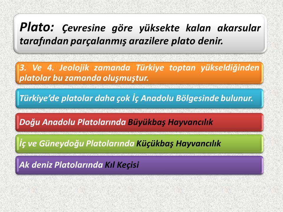 Türkiye'nin Platoları Uzun Yayla P.Bozok Haymana Cihanbeyli Obruk p.