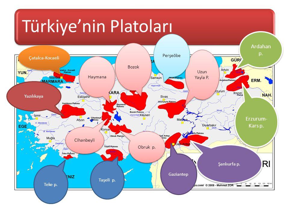 İç Anadolu Bölgesindeki platoların isimlerini yazınız.