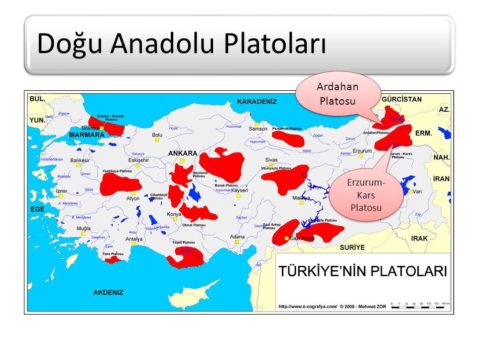 Doğu Anadolu Platoları Erzurum-Kars PlatosuArdahan Platosu Özellikleri Lav Platolarıdır.