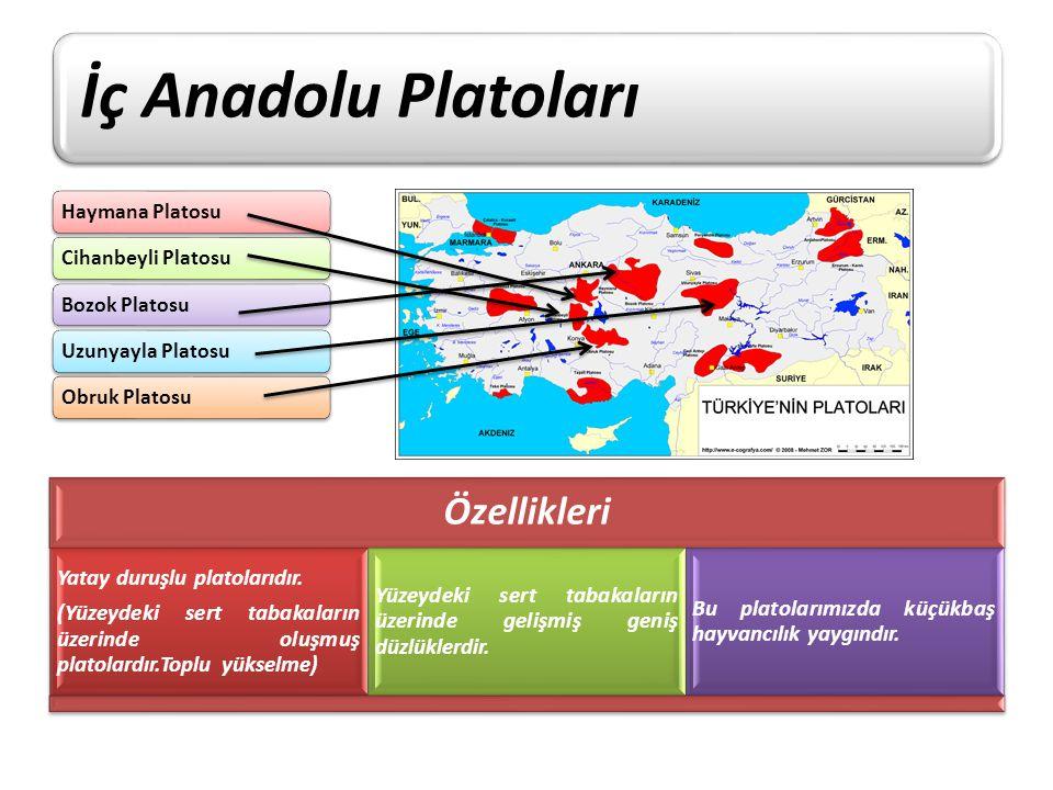 İç Anadolu Platoları Haymana PlatosuCihanbeyli PlatosuBozok PlatosuUzunyayla PlatosuObruk Platosu Özellikleri Yatay duruşlu platolarıdır. (Yüzeydeki s