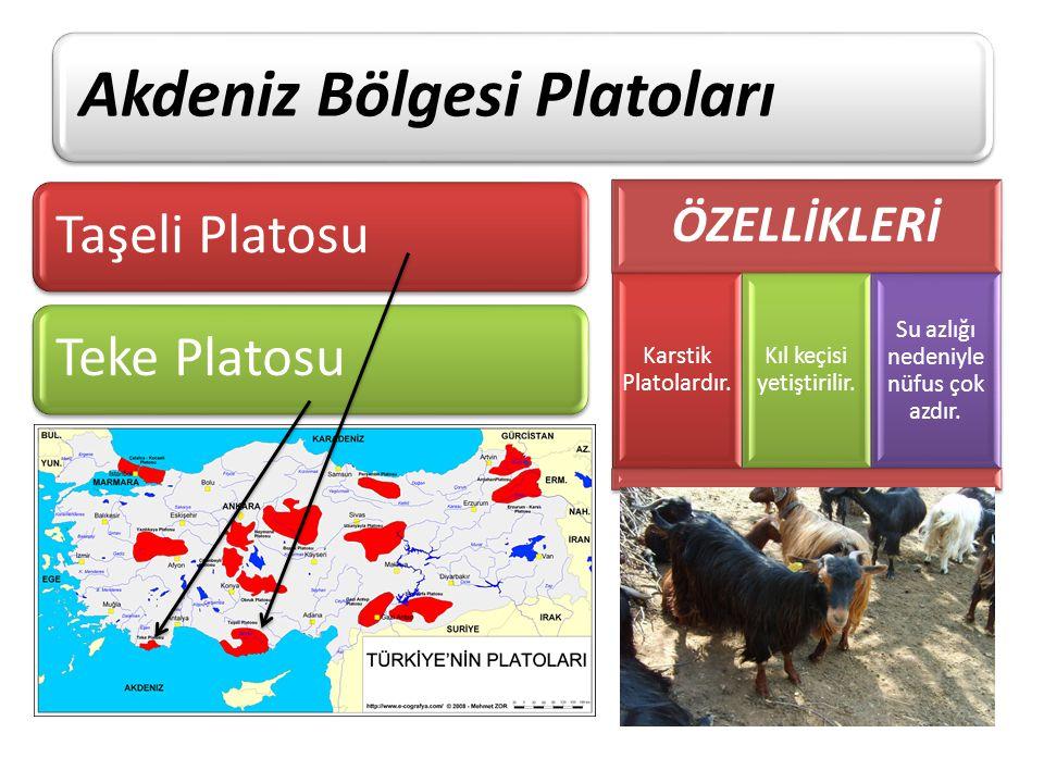 Akdeniz Bölgesi Platoları Taşeli PlatosuTeke Platosu ÖZELLİKLERİ Karstik Platolardır. Kıl keçisi yetiştirilir. Su azlığı nedeniyle nüfus çok azdır.
