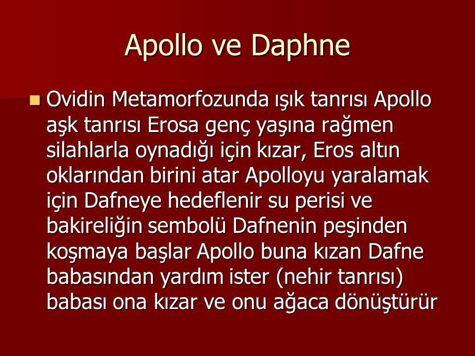 Apollo ve Daphne Ovidin Metamorfozunda ışık tanrısı Apollo aşk tanrısı Erosa genç yaşına rağmen silahlarla oynadığı için kızar, Eros altın oklarından