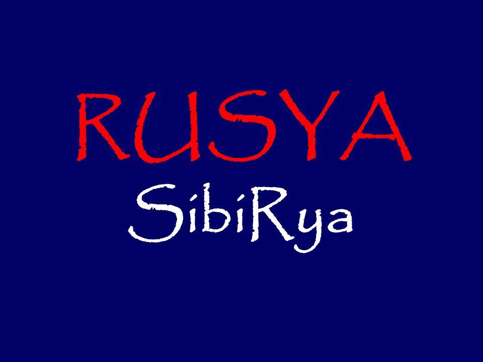 RUSYA SibiRya