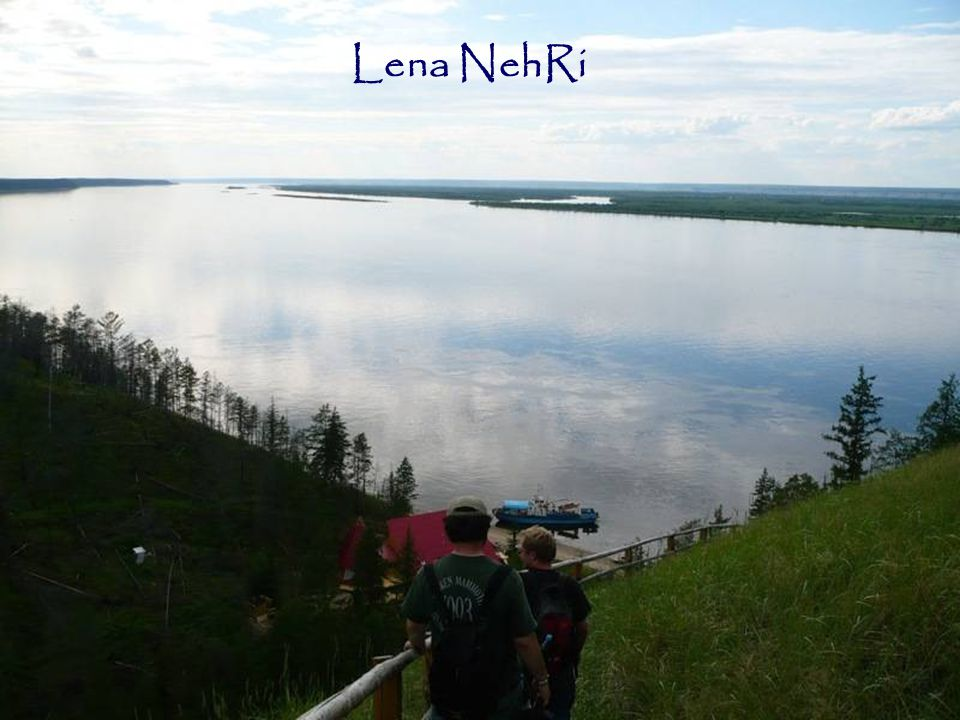 Lena NehRi